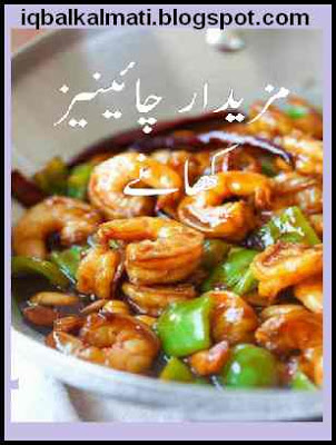 Chinese dishes urdu cooking book by shabela tariq free download chinese dishes urdu cooking book by shabela tariq free download forumfinder Gallery