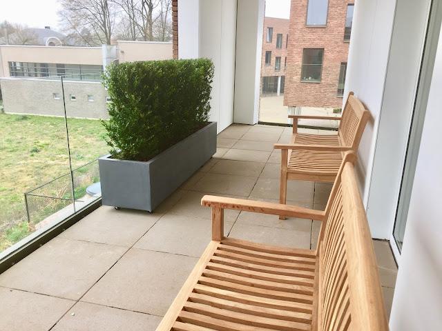 Plantenverhuur België in Antwerpen Brussel Limburg Vlaams-Brabant voor bedrijven kantoor events beurzen Prijzen op aanvraag