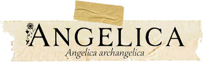 Magical and Medicinal Uses of Angerlica. Includes FREE BOS page!