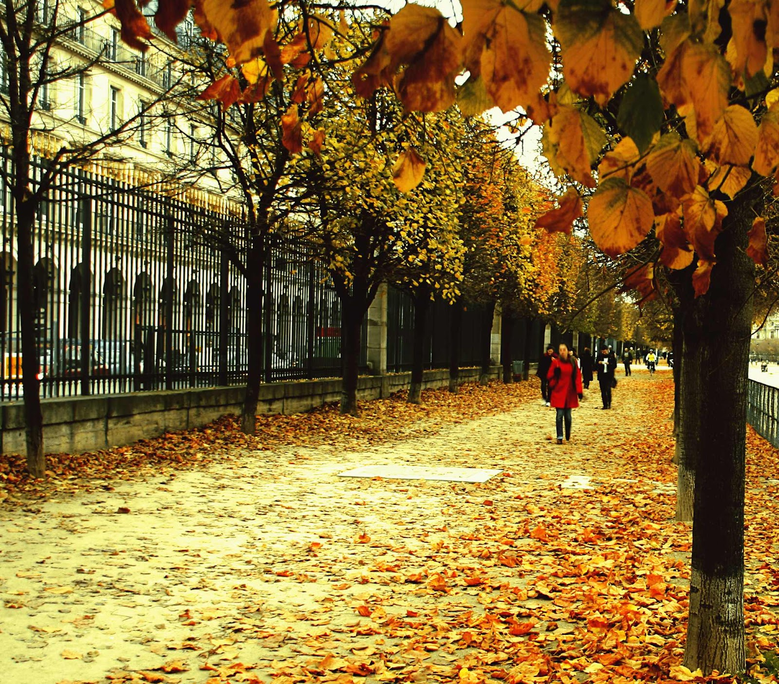 fall in paris france - photo #19