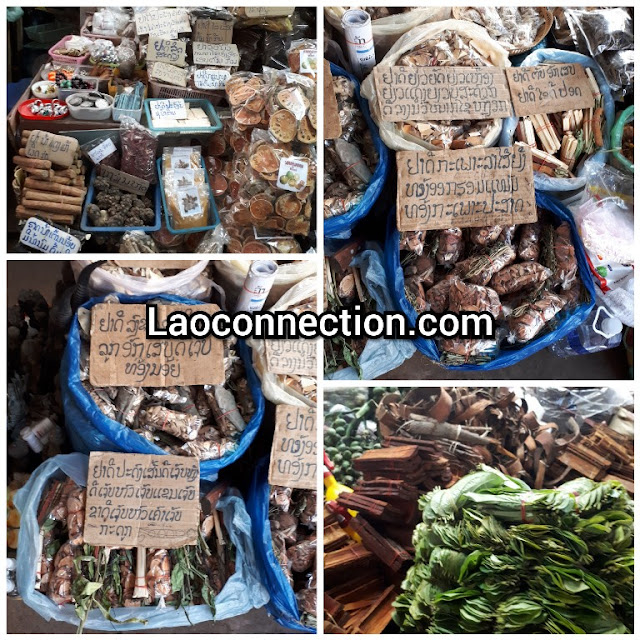 Medicinal herbs found at the market