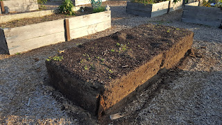 a garden bed without the old falling apart wood frame