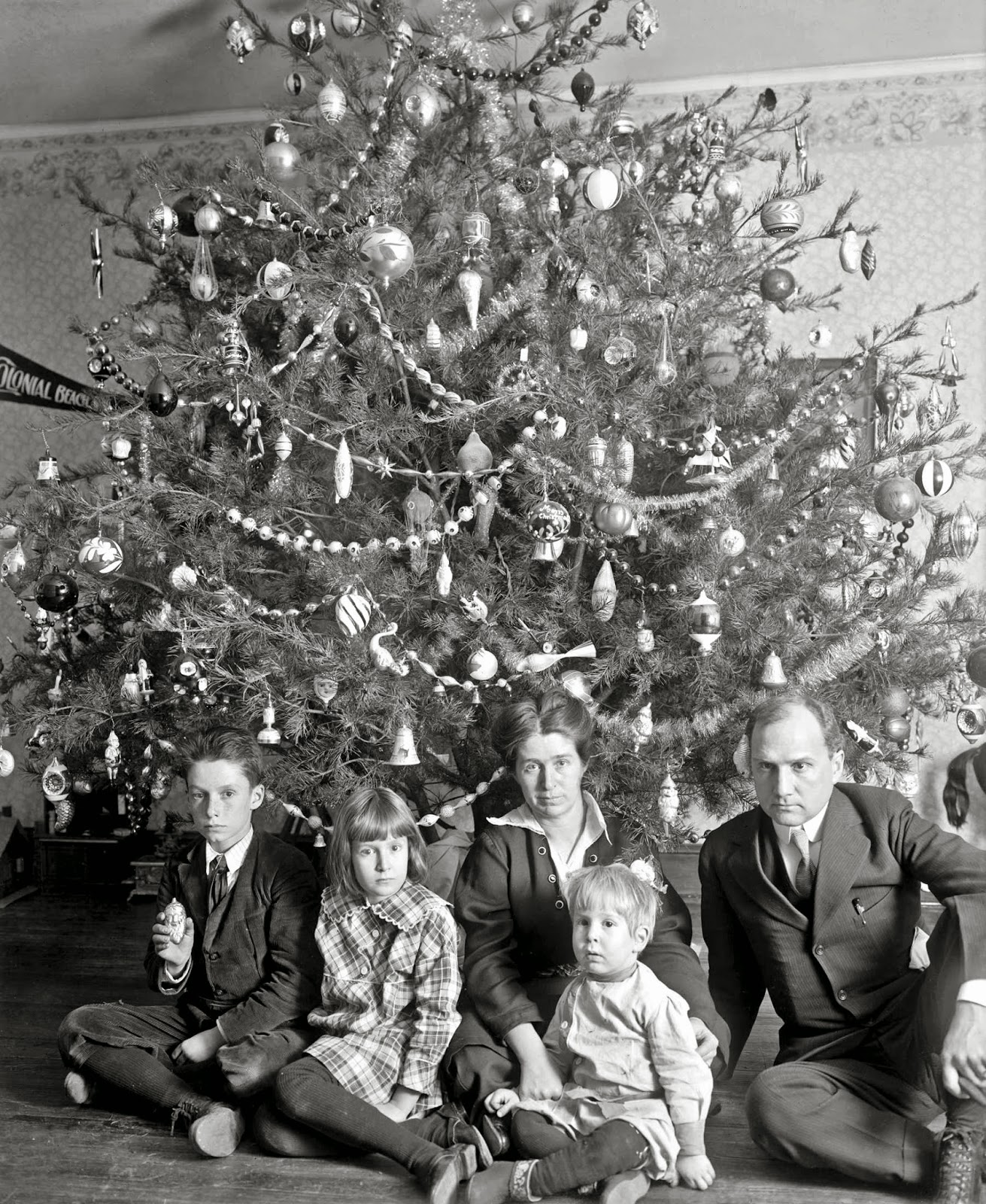 Where Does Christmas Trees Come From: History In Photos: The Dickey Family Christmas Tree