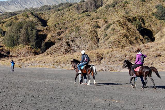 Turistas a caballo en el Monte Bromo