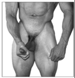 exercicios-para-aumentar-o-penis2