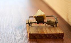 صور : اختراعات رائعة لم تسمع بها من قبل