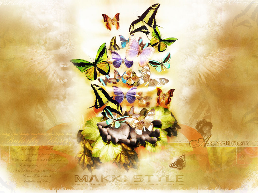 Free Fall Bc Nature Wallpaper Butterfly Wallpaper 3d Wallpaper Nature Wallpaper
