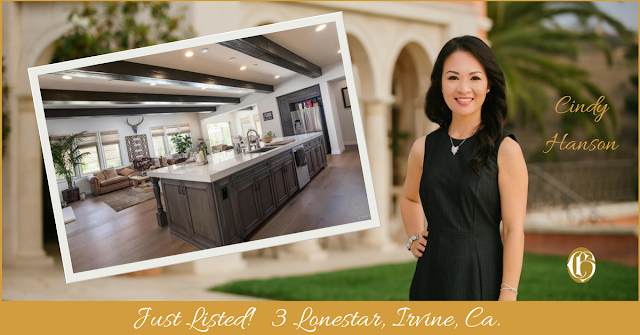 just listed by cindy hanson with CHGLH 3 lonestar, irvine