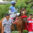 Goldencents: On The Right Side Again