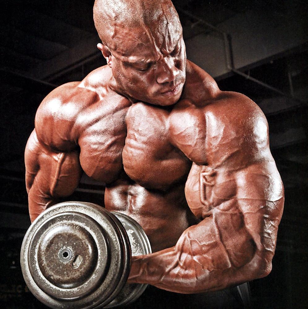 Muscle Gallery Phil Heath 2013