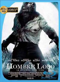 El Hombre Lobo 2012HD [1080p] Latino [Mega] dizonHD