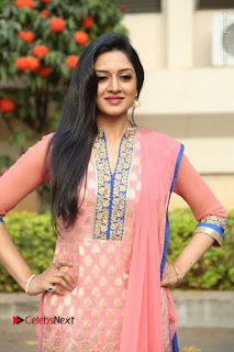 Actress Vimala Raman Stills in Beautiful Pink Salwar Kameez at (ONV) Om Namo Venkatesaya Press Meet  0086.JPG