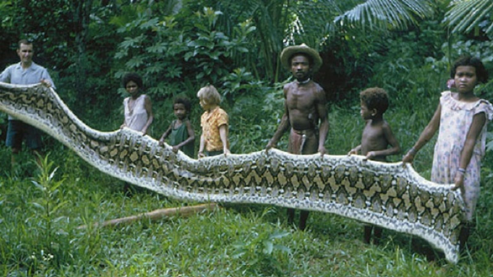 Agta Tribe, Giant snake in Philippines