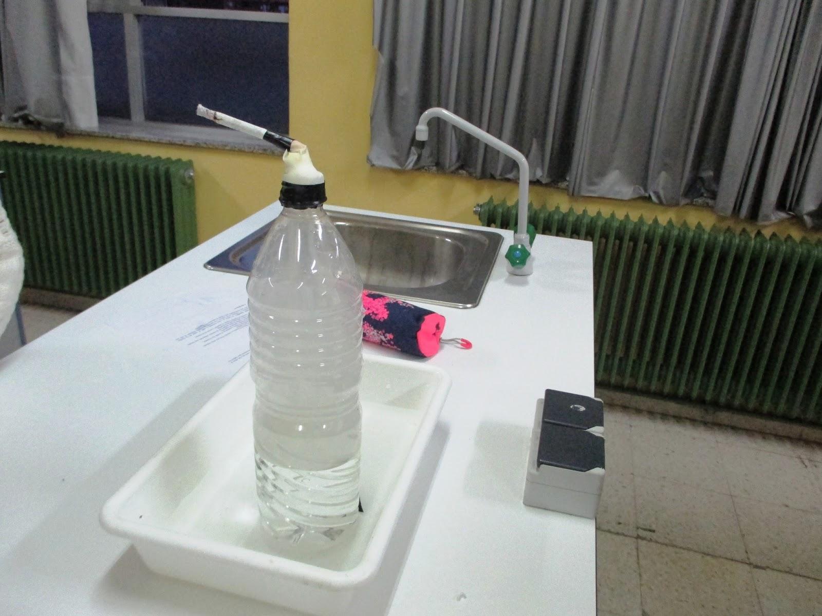 Departamento de Biología y Geología - IES Carreño Miranda - Avilés ...