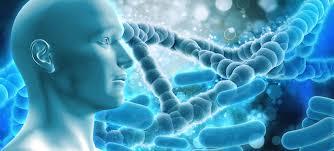 Ótimos cursos online para área de Biologia