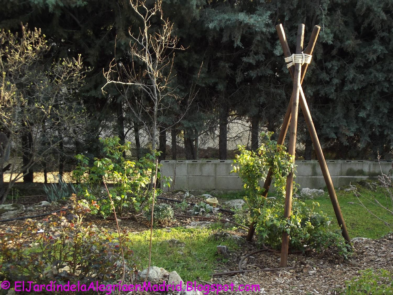 El jard n de la alegr a c mo hacer un soporte r stico for Como hacer un jardin rustico