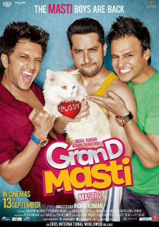 Grand Masti 2013 HDRip 350MB Full Hindi Movie Download 480p Watch Online Free bolly4u