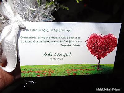 Ankara düğün nikah çamı Seda Kürşat 2