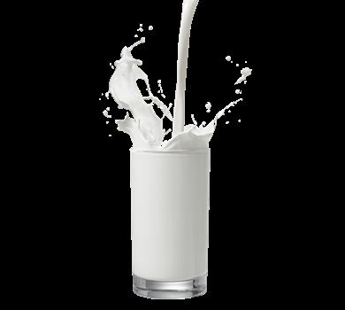 Keajaiban Dan Manfaat Susu Kambing Etawa Untuk Kesehatan
