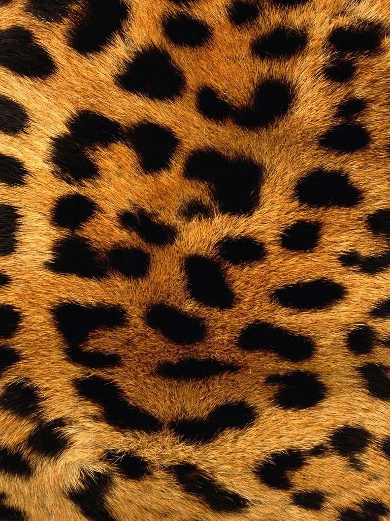 Leopard Skin Pattern Background iPad Wallpaper, 1024x1024 ...