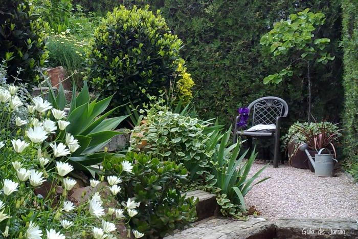 La escalera del jardin