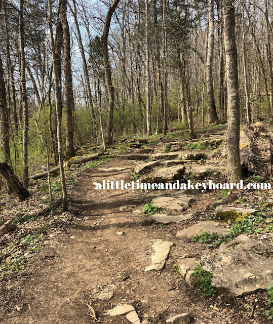 Slightly rocky path through the woods at Raven Run Nature Sanctuary in Lexington, Kentucky.