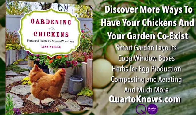 Gardening with Chickens | Fresh Eggs Daily®