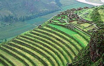 El Deslumbrante Mundo De Los Incas Agricultura