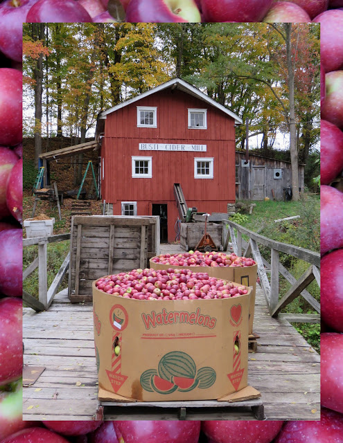 Things to do in Westfield, New York: Busti Apple Cider Mill