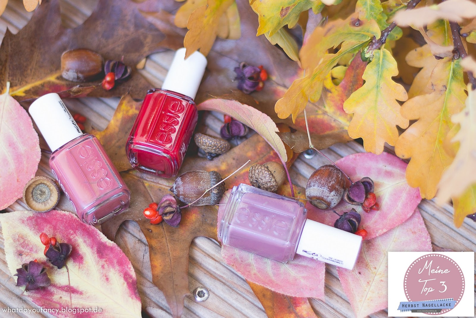 Blogparade Top 3 Herbst Nagellacke