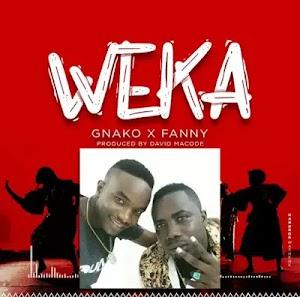 Download Audio | G Nako & Fany - Weka (Instrumental)