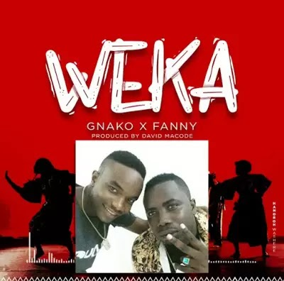 Download Audio | G Nako & Fany - Weka (Instrumental)