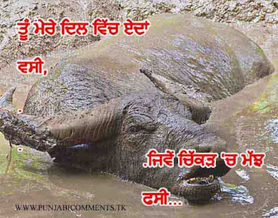 Punjabi Graphics and Punjabi Photos : FUNNY COMMENTS IN ...