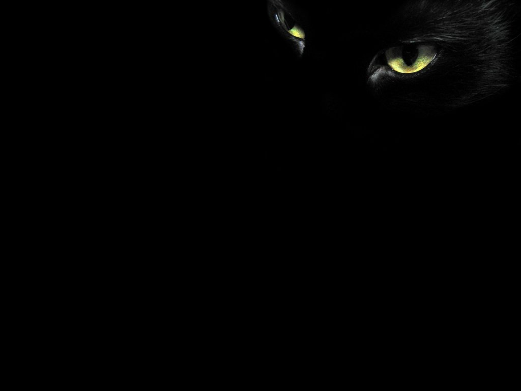 Download 800+ Wallpaper Black Eyes  Terbaik