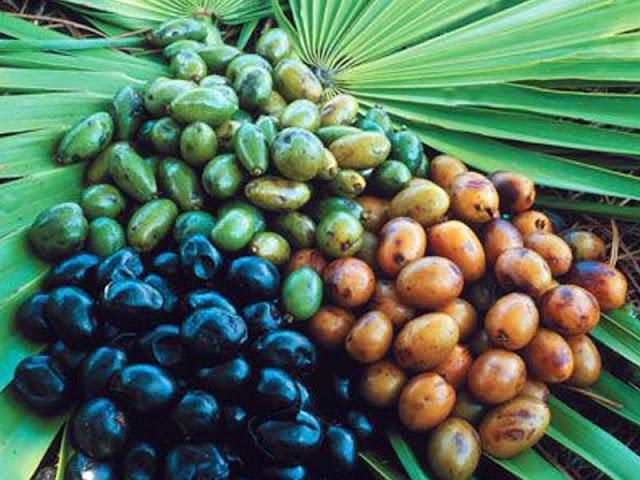 thaimedicals.blogspot.com