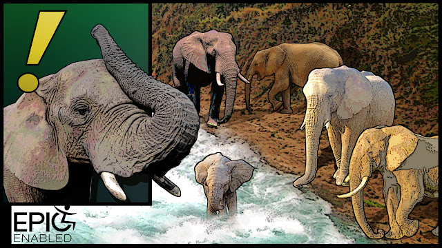 Two panels. One elephant with trunk up. Baby elephant is in river. Other elephants gather.
