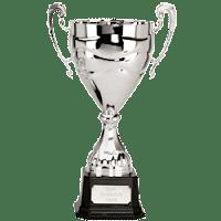 winners cup trofi