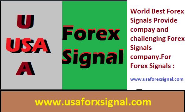 World best forex signals
