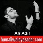 http://www.humaliwalayazadar.com/2014/11/ali-adil-nohay-2015.html