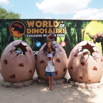Three little baby dinosaurs hatching at World of Dinosaurs at Paradise Wildlife Park