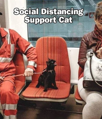 social distancing funny