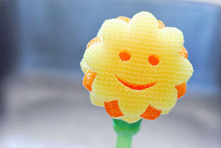 https://smileshop.scrubdaddy.com/product/scrub-daisy-dishwand-system-complete-kit/