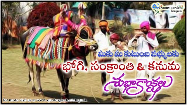 Sankranti Gangiredu images with happy pongal wishes - Pongal Sankranti 2017 quotes wishes