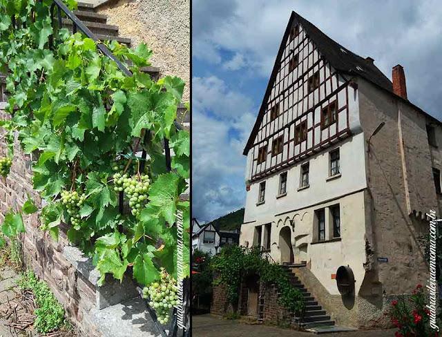 mosel estrada vinho alemanha cidades uva - Estrada do vinho do rio Mosel