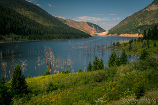 Cramer Imaging's quality landscape photograph of Quake Lake or Earthquake Lake in with the hills and forest in Montana