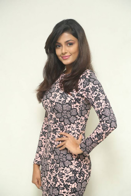 Anisha Ambrose Stills At Fashion Designer Son Of Ladies Tailor Movie Press Meet