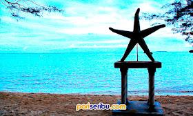 Pantai Bintang Wisata Pulau Pari