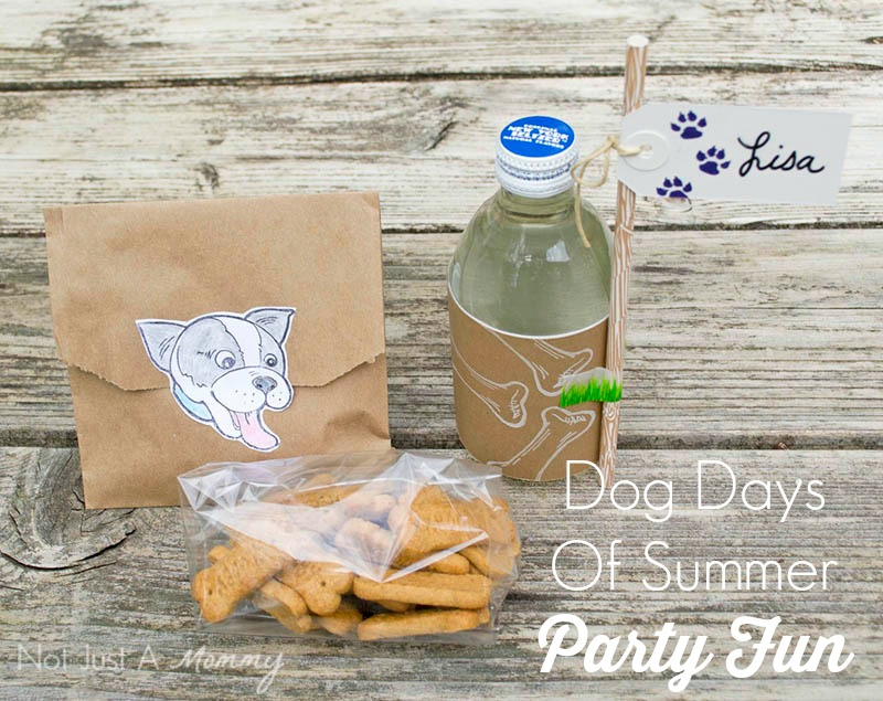 Dog Days Of Summer Party Fun