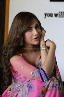 Angela Krislinzki Rogue Movie Fame Telugu Actress in Saree Backless Choli 001.JPG