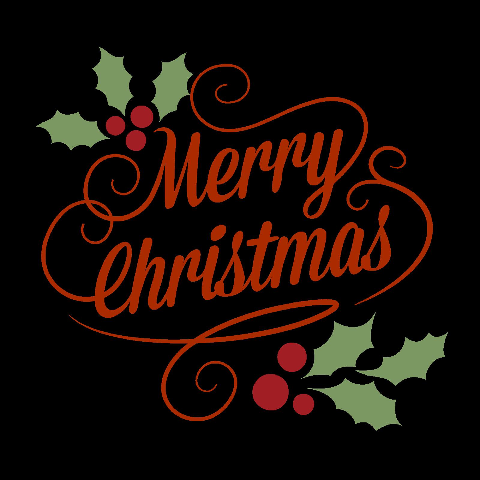 Merry Christmas In Irish.Irish Computer Society Christmas Gathering